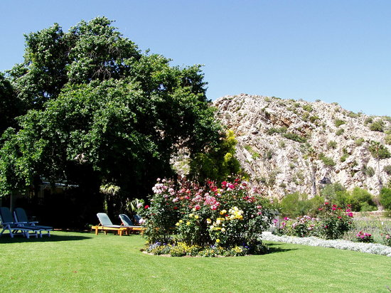 Montagu Vines Guesthouse: Lovers Walk cliffs from the front lawns