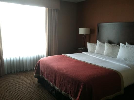 Embassy Suites by Hilton Chicago - Lombard/Oak Brook: room w/king bed