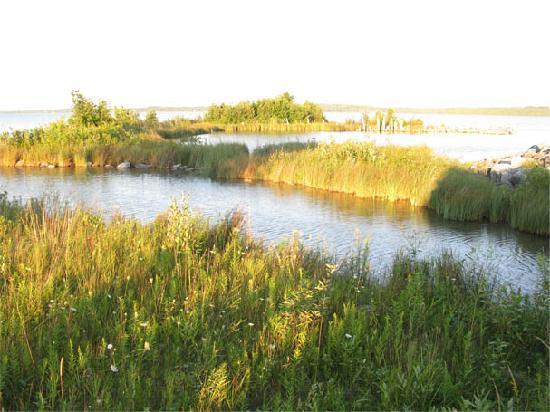 River Bend Resort: the shoreline