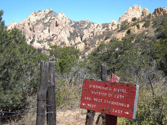 Cochise Stronghold: we walked as far as the stronghold divide