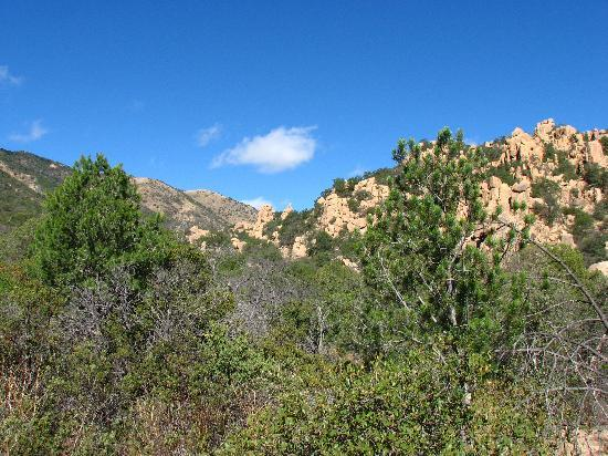 Cochise Stronghold: very green lower part