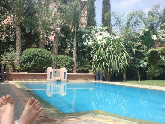 La Setifa : piscine sétifa