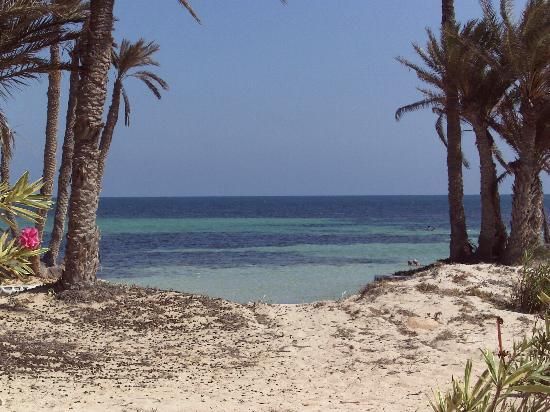 El Mouradi Djerba Menzel: Vue de la chambre