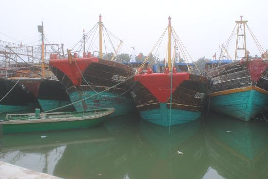 Boao Inn B&B: An easy bike ride away is TanMen Harbor, home of beautiful wooden fishing boats