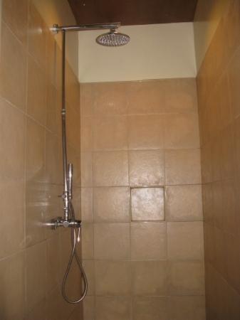 Dos Palmas Island Resort & Spa: shower area with no enclosure/shower curtain