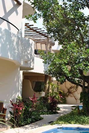 Hotel Posada 06 Tulum: garden