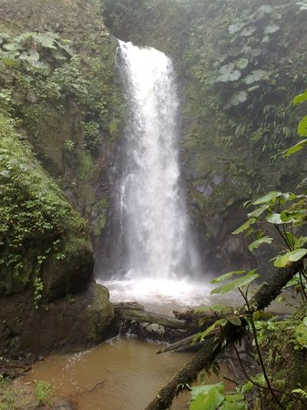 Province of Alajuela, Costa Rica: La Paz Waterfall