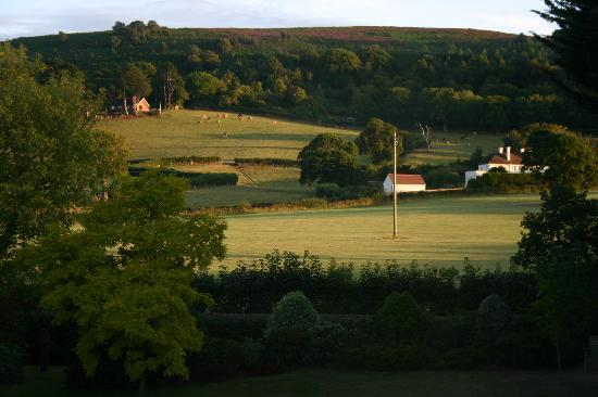 Exmoor Country House: An evening view from our room