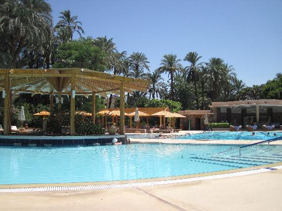 Sofitel Winter Palace Luxor: Pool