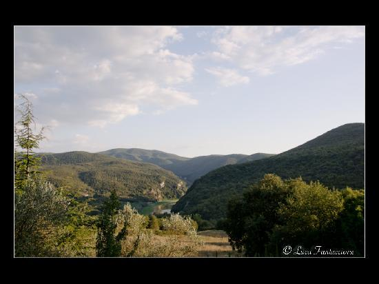 Torreluca B&B: Vista sul Tevere dalla terrazza