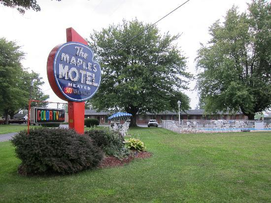 Maples Motel: the hotel property -lots of shade !