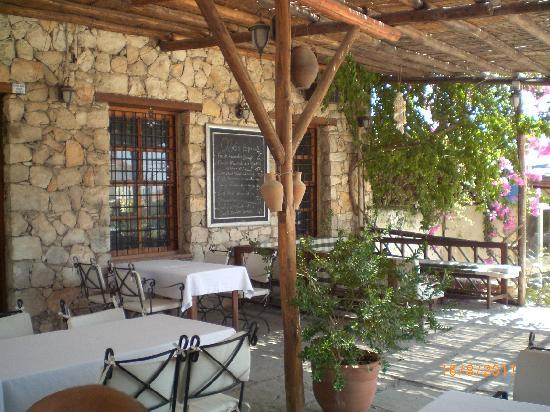 Milas, Turkey: Olio Restaurant nr Appolon Temple, Didim
