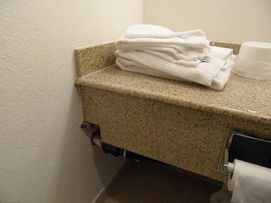 Rodeway Inn & Suites Portland: Exposed plumbing and self-service towels