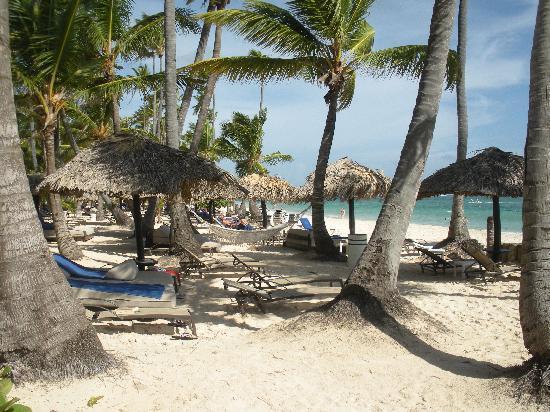 TRS Turquesa Hotel: Gorgeous beach !!