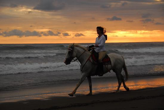 The Riding Adventure: sunset ride!!