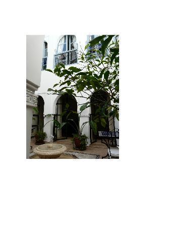 Riad L'Orange Bleue: le patio