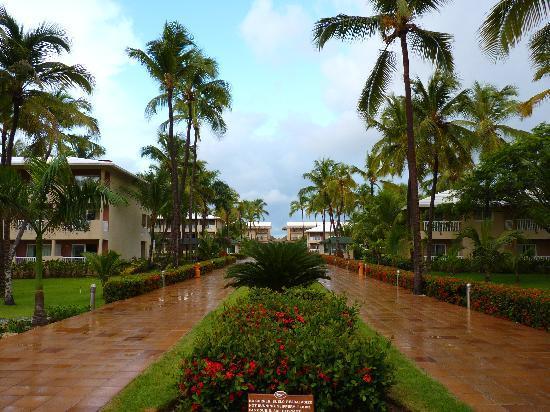 Sirenis Punta Cana Resort Casino & Aquagames: Grande Allée Principale