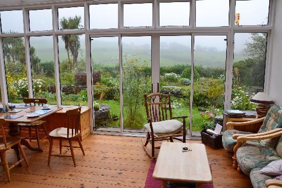 Rockyview Farmhouse : Serre met uitzicht op de tuin