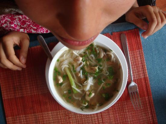 Bamboo Bamboo Restaurant: Yummy pho!