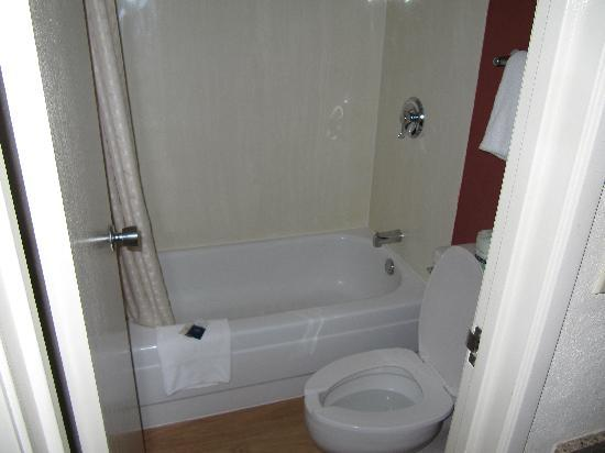 Red Roof Inn Cleveland East - Willoughby : Compact bathroom