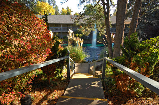 Shilo Inn Hotel & Suites - Beaverton : Shilo Inns Beaverton