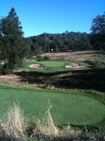 DarkHorse Golf Club : 12th tee box