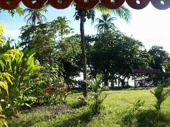 Hotel Reggae Cabinas: Le jardin face à la mer