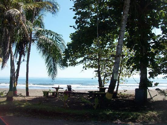 Hotel Reggae Cabinas: La plage trop belle !