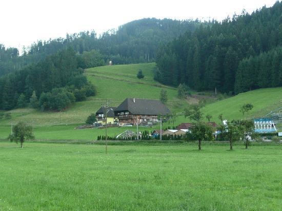 Gutach im Breisgau Germany  city photo : ... Picture of Walderbauernoff, Gutach im Breisgau TripAdvisor