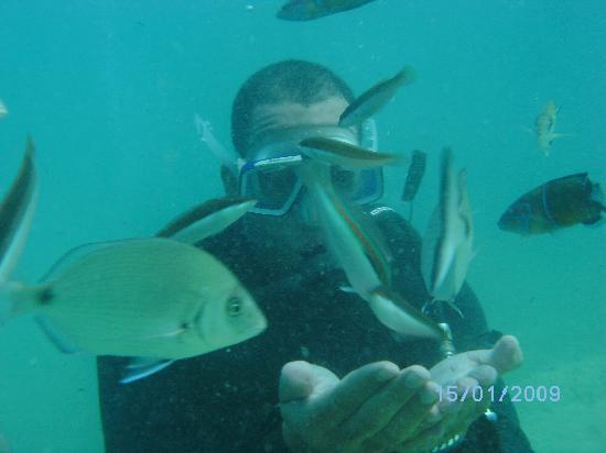Fantasia Hotel De Luxe Kusadasi : scuba diving off-site picked up and dropped off