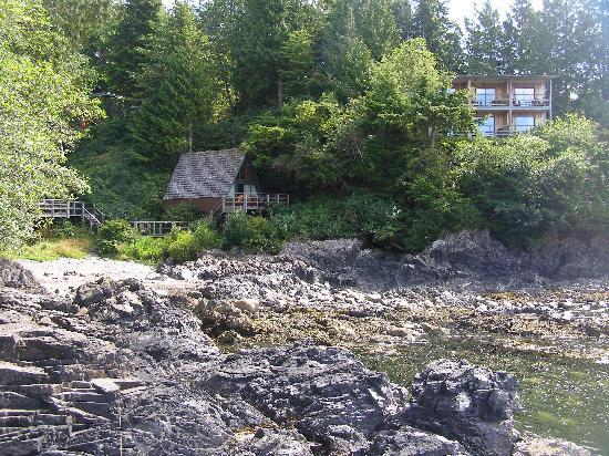 Duffin Cove Oceanfront Lodging: cabins from the beach