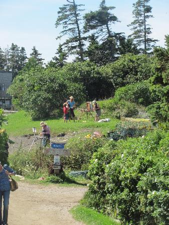 Monhegan Island: there are no roads, no cars, just paths & walking....