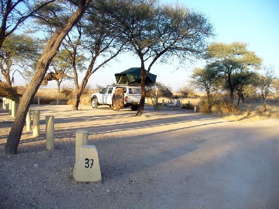 Okaukuejo Resort: Spacious quiet campsite on the edge of the camp. Some of the other sites were smaller.