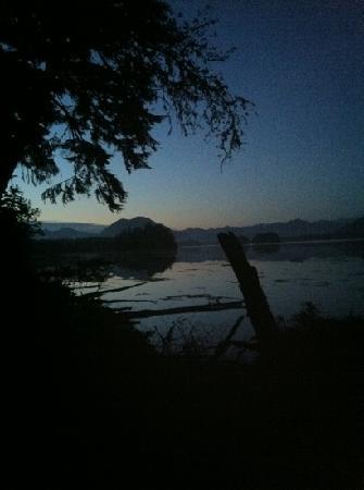 Black Bear Guesthouse: near the firepit at dusk