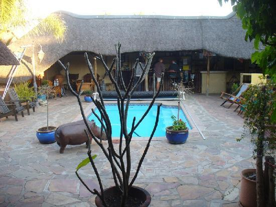 Chameleon Backpackers Hostel: Courtyard and pool, with bar behind