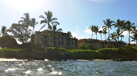 Punahoa Beach Apartments : Punahoa from water, 205 is corner unit, 2nd floor