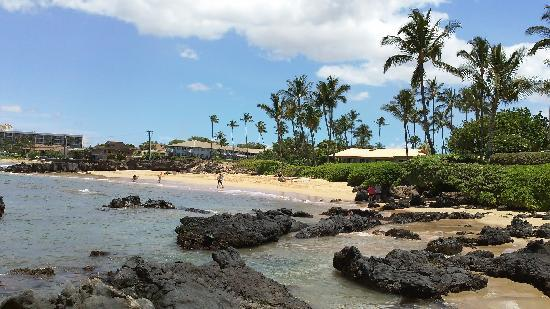 Punahoa Beach Apartments: View from beach towards Punahoa with Cove Beach in background