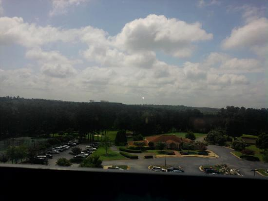 Embassy Suites by Hilton Greenville Golf Resort & Conference Center: This was the view from the new room we were moved to.