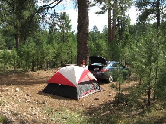 Kaibab Camper Village: Site Q