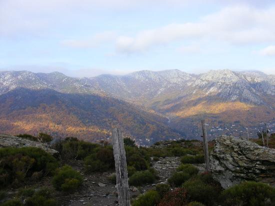 Parc National des Cévennes : vue sur le vallée de Castagnols, Vialas