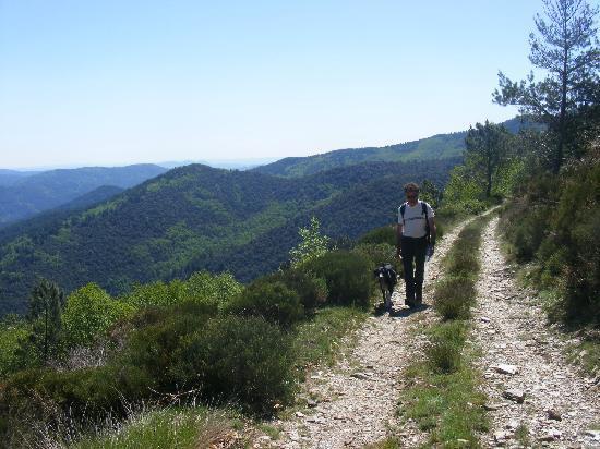 Parc National des Cévennes : randonnée à Castagnols, Vialas