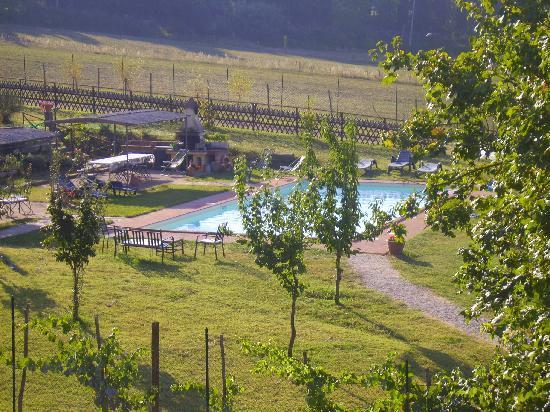 Agriturismo Podere Borgobello: piscina vista dalla cucina