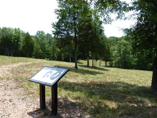 Musgrove Mill State Historic Site: Battlefield
