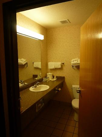 Comfort Inn & Suites Redwood Country: Bad & Klo