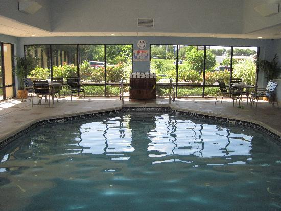 Hampton Inn Columbia: pool