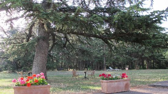 Relais de Roquefure : Il parco
