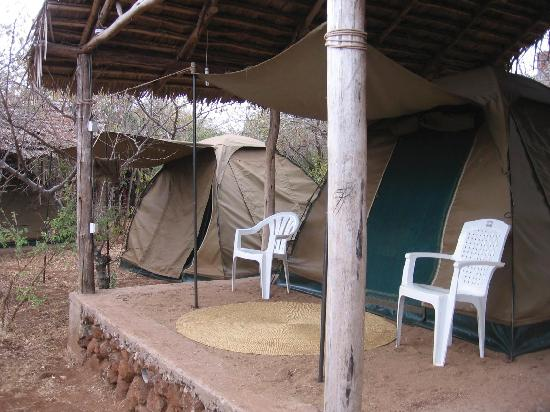 Havennature Safari Camp and Lodge: One of the many tents