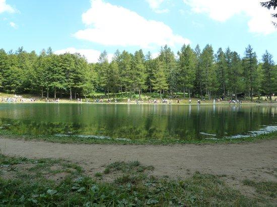 Sestola, Italie : Lago della Ninfa in estate