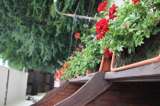 Cabana Schiorilor: balcony