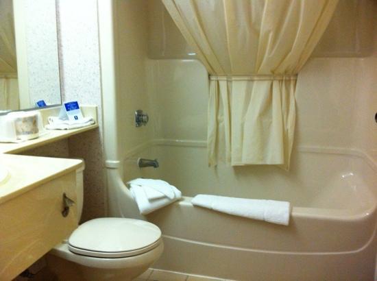 Comfort Inn Kenora: plenty of towel